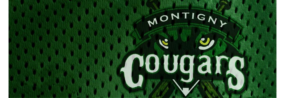 Cougars de Montigny